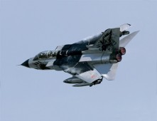 "1291  Tornado IDS ""Black Panthers"""